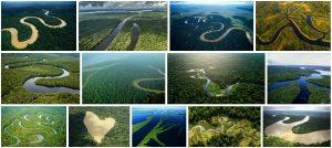 The Internationalization of the Amazon 2